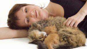 Assurance santé animale : Prévenir le coup de chaleur