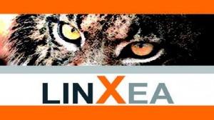 Assurance-vie : LinXea annonce des taux de rendement entre 2,90% et 4,05% pour 2012