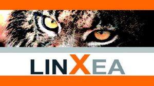 Linxea annonce des taux de rendements entre 3,35% et 3,52% pour l'exercice 2013