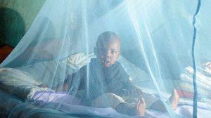 Prévention santé/Paludisme : Un effort d'investissements permettrait de sauver 3 millions de vies