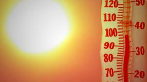 Météo / Prévention : Comment se protéger des pics de chaleur ?