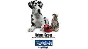 Assurer votre scooter à la Mutuelle des Motards avec Urban'Scoot