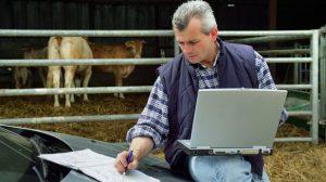 Les agriculteurs enfin indemnisés en cas d'arrêt maladie