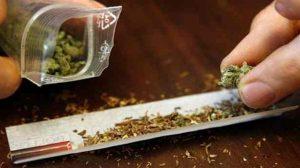 Santé : A l'aube d'une dépénalisation du cannabis ?