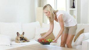 Assurance santé animale : Le chien souffre du mal de vivre