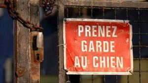 Assurance santé animale : prévenir de la présence d'un chien méchant ne suffit pas