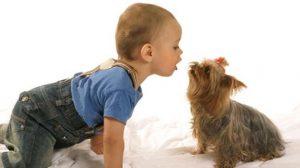Assurance santé animale : Quelles sont les bonnes pratiques avec les enfants ?