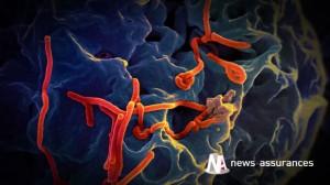 Ebola:  Le risque de pandémie n'est pas couvert par l'assurance voyage
