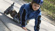 Que faire en cas d'accident d'un enfant dans son école ?
