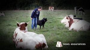 Suicide : les agriculteurs sont une population à risque