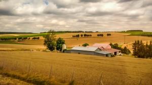 Orages de grêle : Un dégrèvement de la taxe sur le foncier pour les agriculteurs