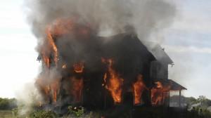 Assurance Habitation : Les assurances qui couvrent vos biens si vous êtes victime d'un feu de forêt