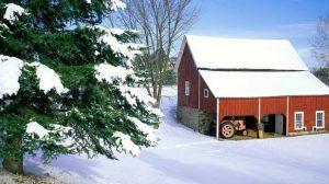 L'assurance habitation face à la neige et au gel
