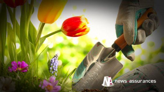 Petit guide pour faire du jardinage en toute sécurité