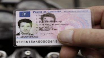 Qu'est-ce que l'assurance du permis de conduire ?