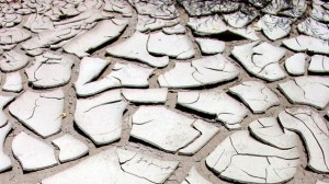 Indemnisation : L'état de catastrophe naturelle reconnu pour les sécheresses de 2012-2013 dans le sud-ouest